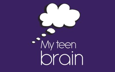 "Outline of the Herts ""My Teen Brain"" one day professional training"