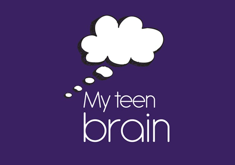 """Outline of the Herts """"My Teen Brain"""" one day professional training"""